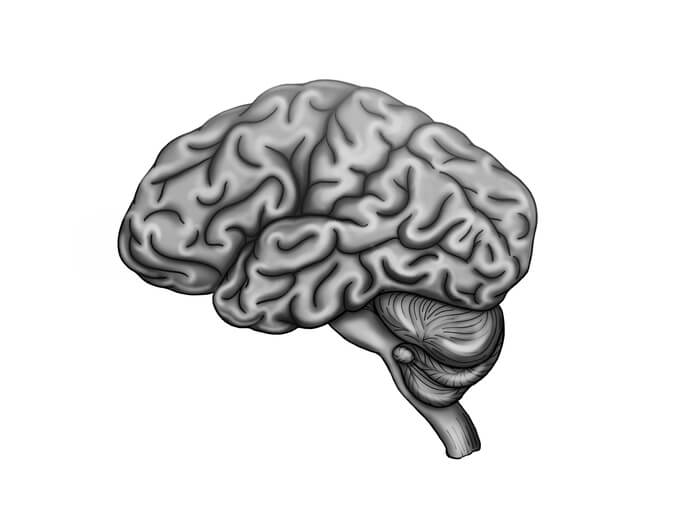 hypoxic and anoxic brain injuries
